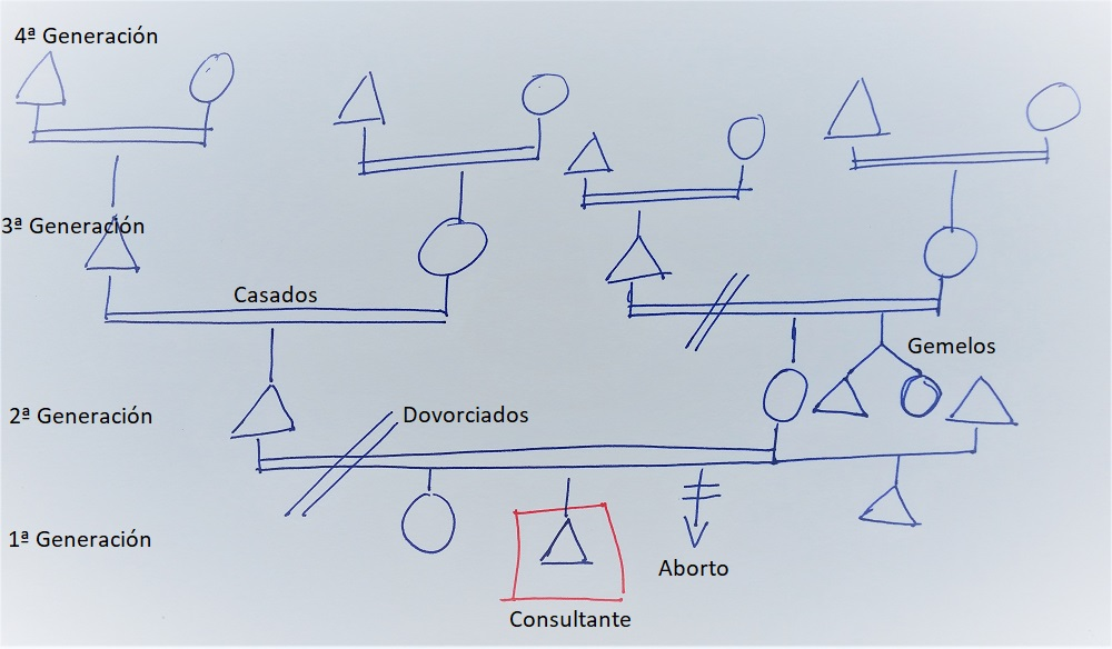 Hacer un árbol genealógico